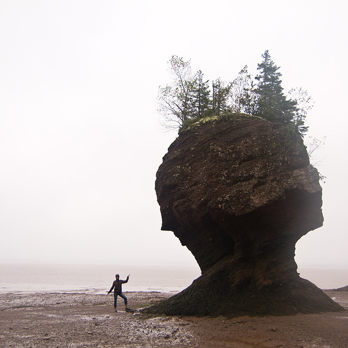 Hopewell Rocks On The Bay Of Fundy