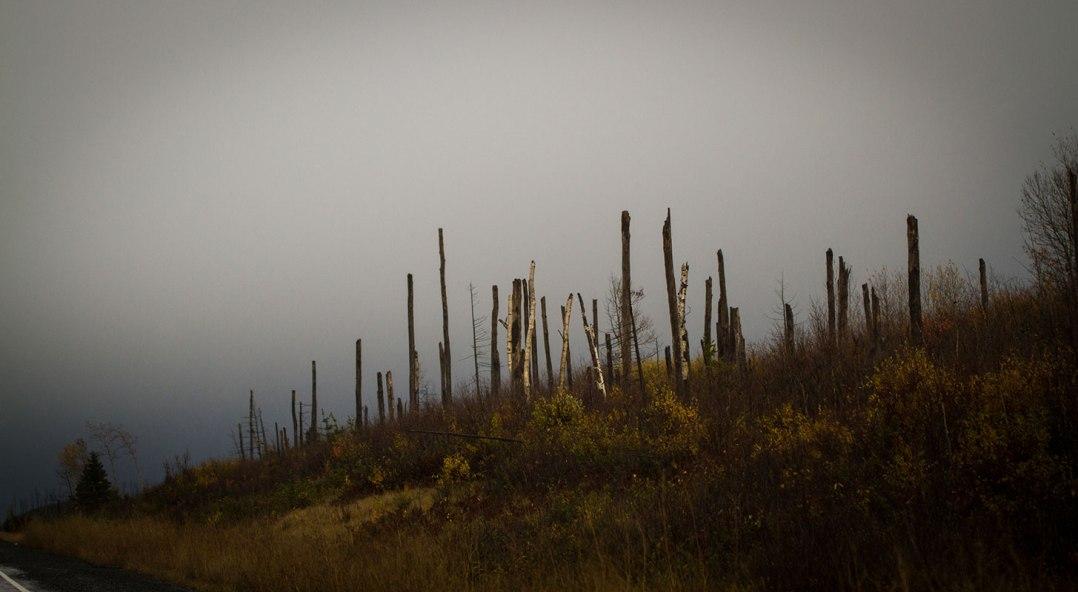 highway 11 ©Shireen Nadir 2012