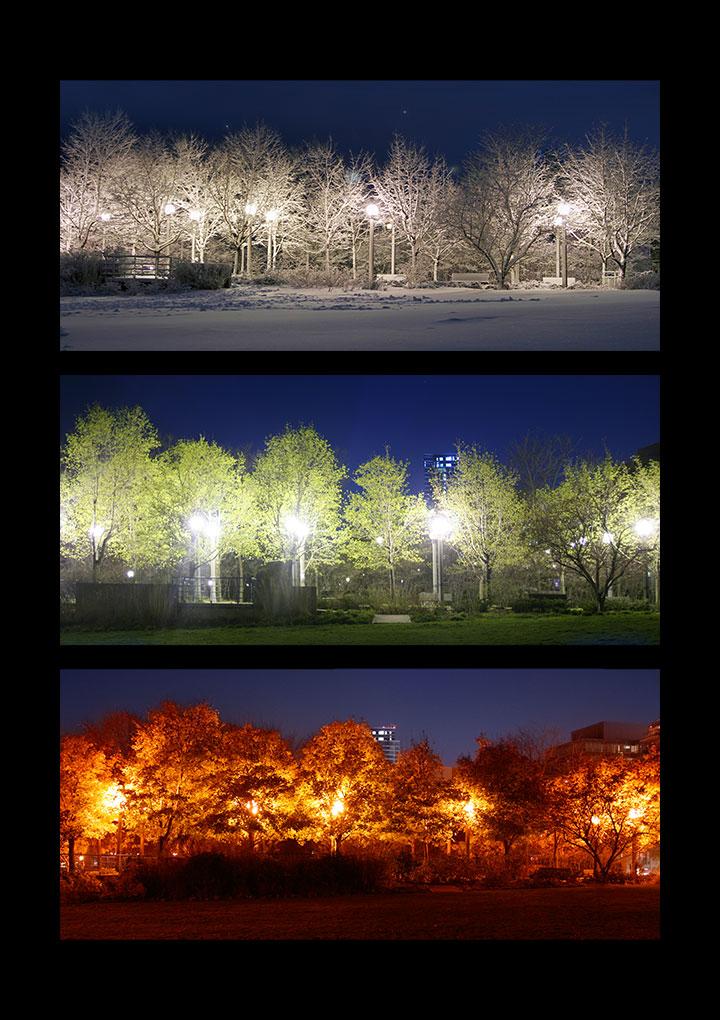 the-seasons ©Shireen Nadir 2012