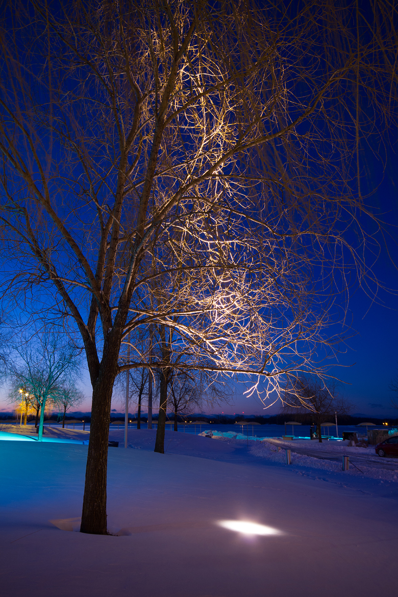 Snow, Toronto, Canada, Winter, HTO Park