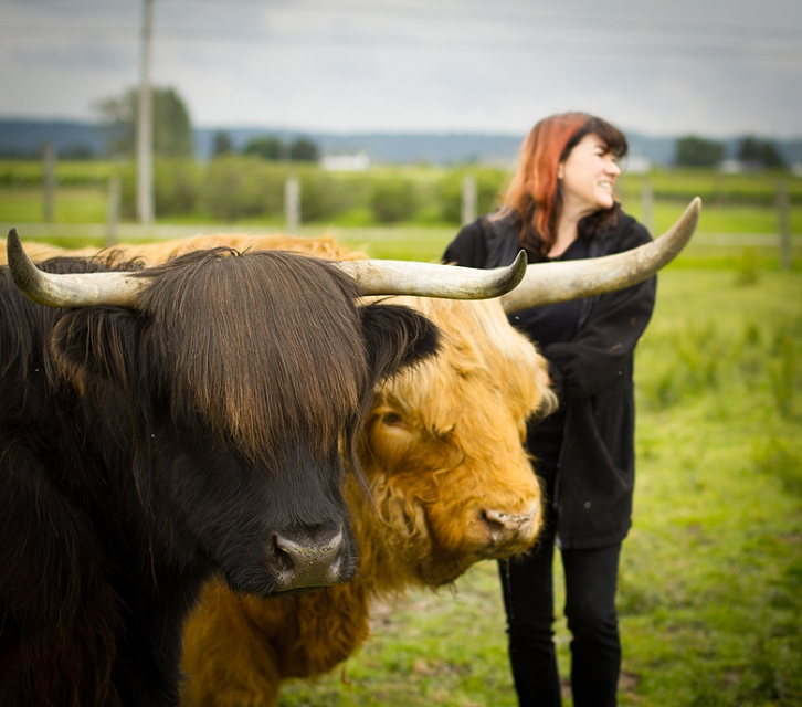 Gryphon Ridge Highland Cattle ©Shireen Nadir 2013