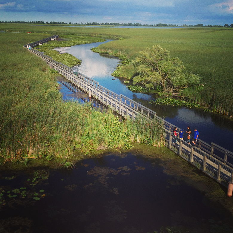 Marsh boardwalk.