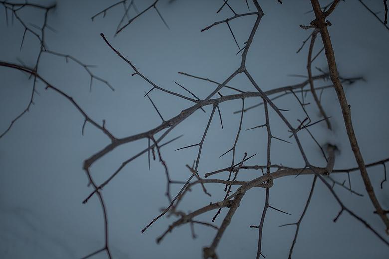 Cheltenham Badlands ©Shireen Nadir 2014