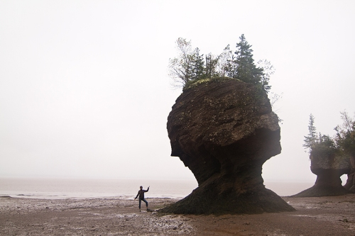 Hopewell Rocks, Moncton, New Brunswick