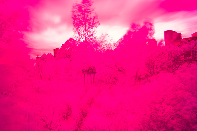 Infrared photography, Hoya R72 Filter